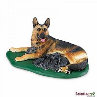 Dog German Shephard with Puppies