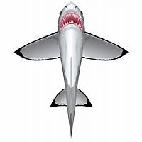 "60"" Sealife Great White Shark Kite"