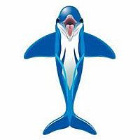 Sealife Dolphin Kite