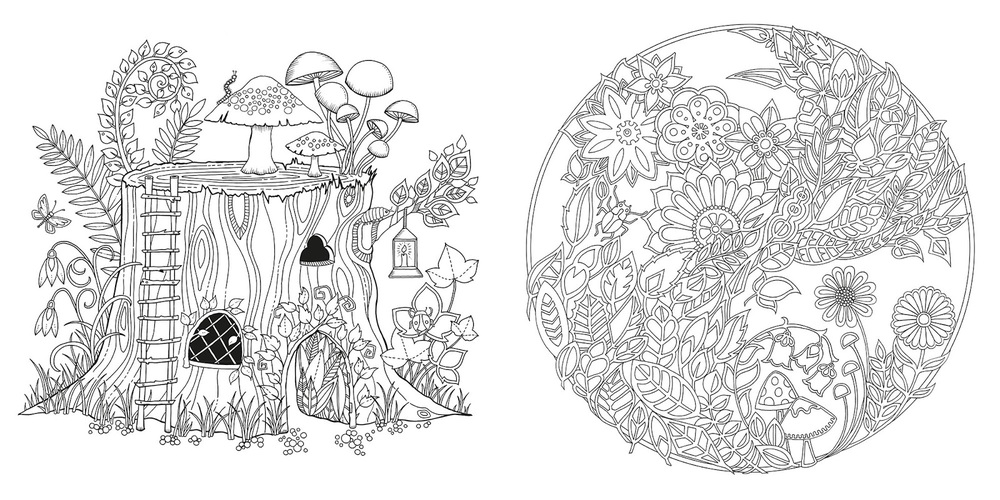 Secret Garden Coloring Book Stevensons