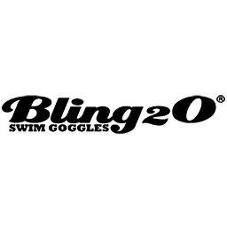 BLING 2 0 INC